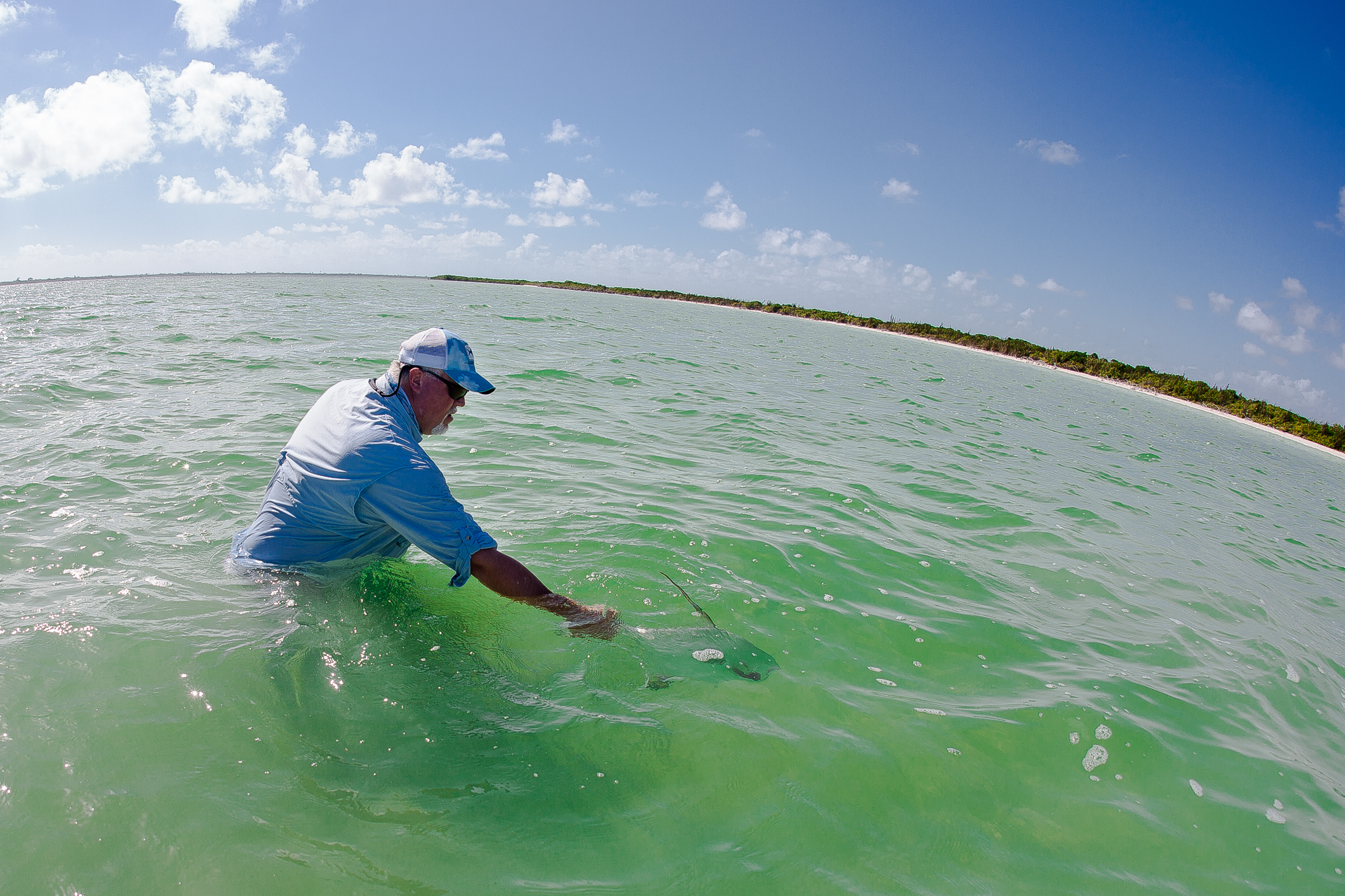 If you catch a permit, it is your job to properly release it. Chris Hunt does so here (photo: Chad Shmukler).
