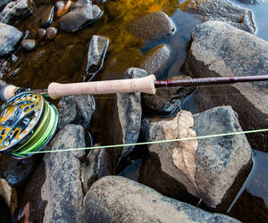 Shadow Fly Fishing Warrior 7 wt Fly Rod