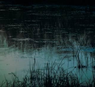 midnight pond scene