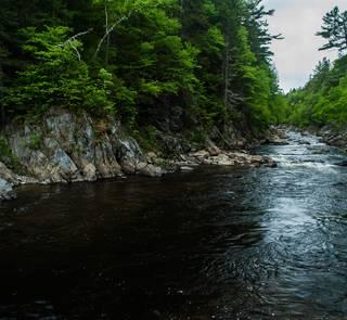 Dead Diamond River