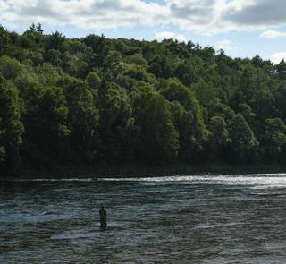 river tay - scotland