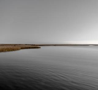 barataria estuary louisiana