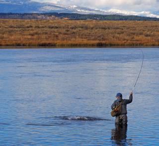 tom rosenbauer fishing