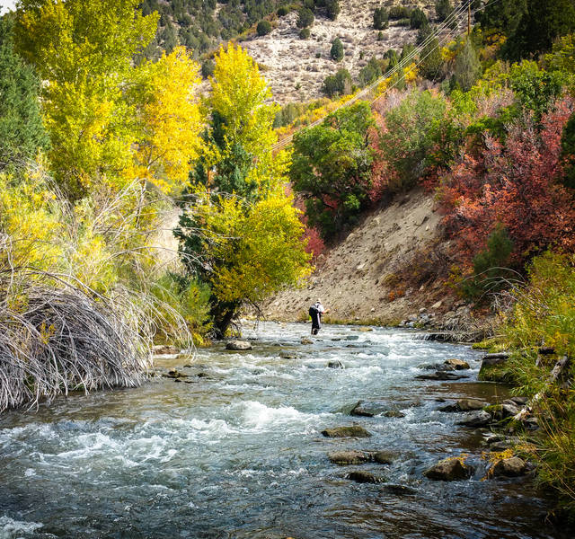 Fly fishing Utah Backcountry