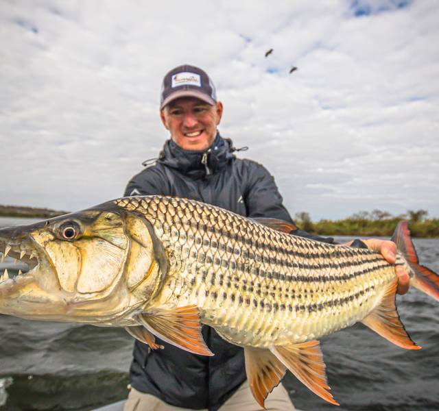 tigerfish | africa | fly fishing
