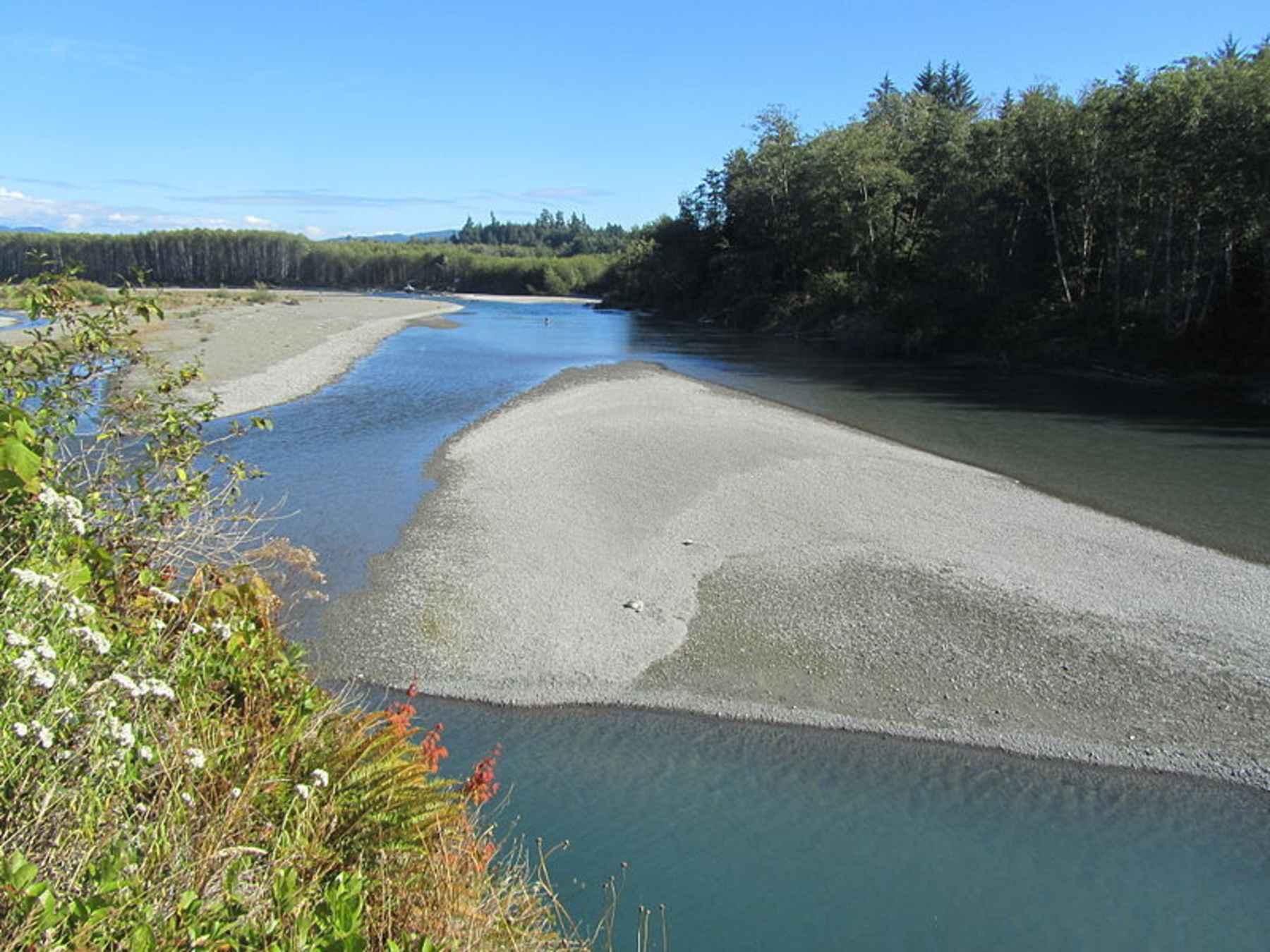 Seattle magazine article incites steelhead advocates for Hoh river fishing