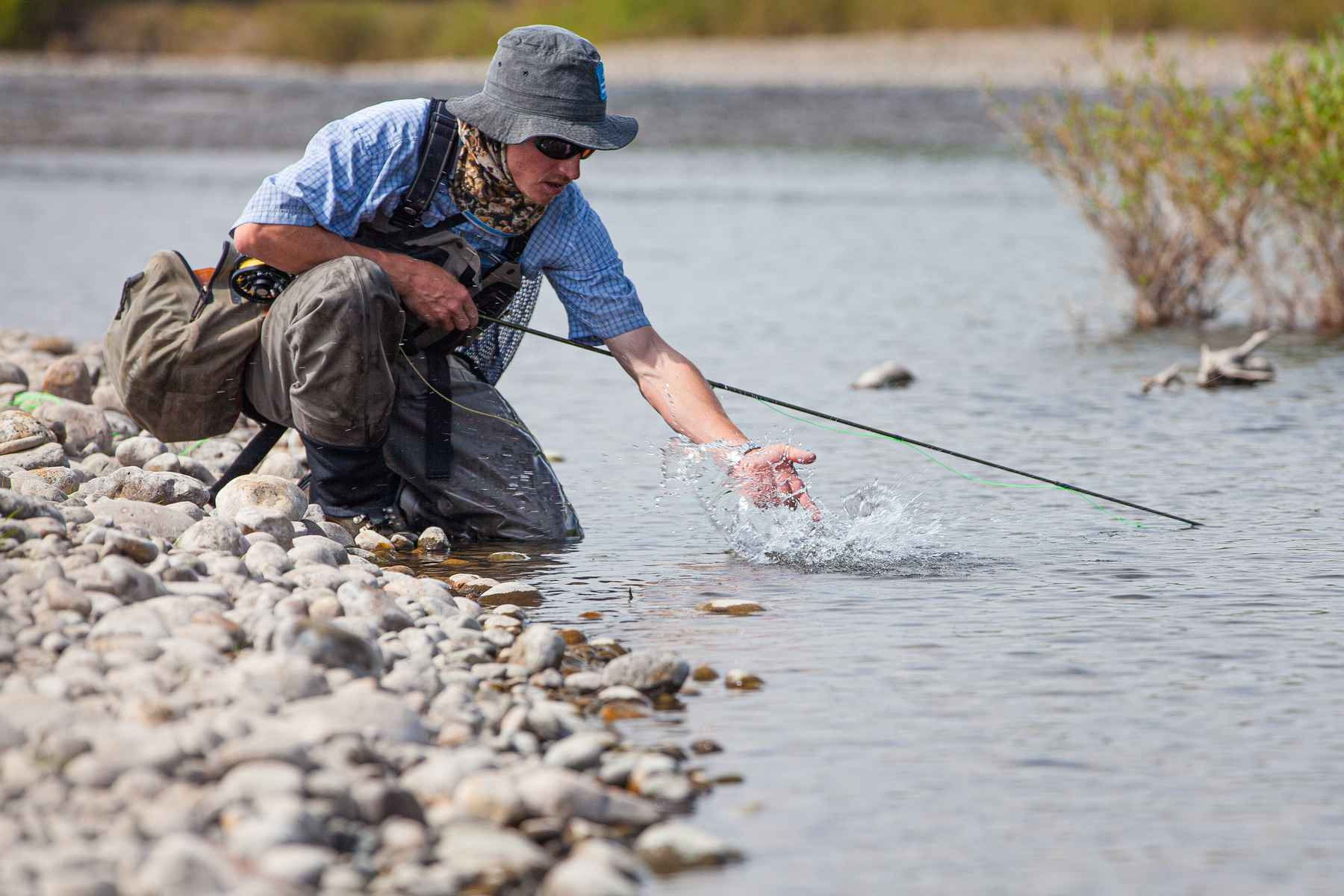 5 dry flies for catching backcountry trout