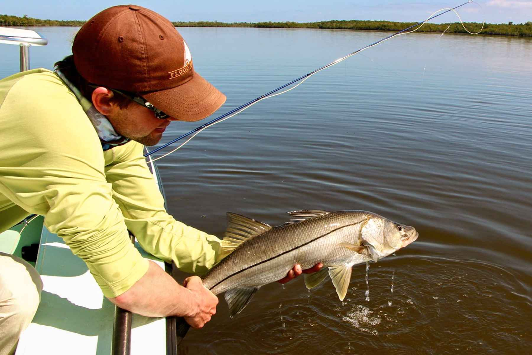 Fly fishing for everglades snook hatch magazine fly for Fishing for snook