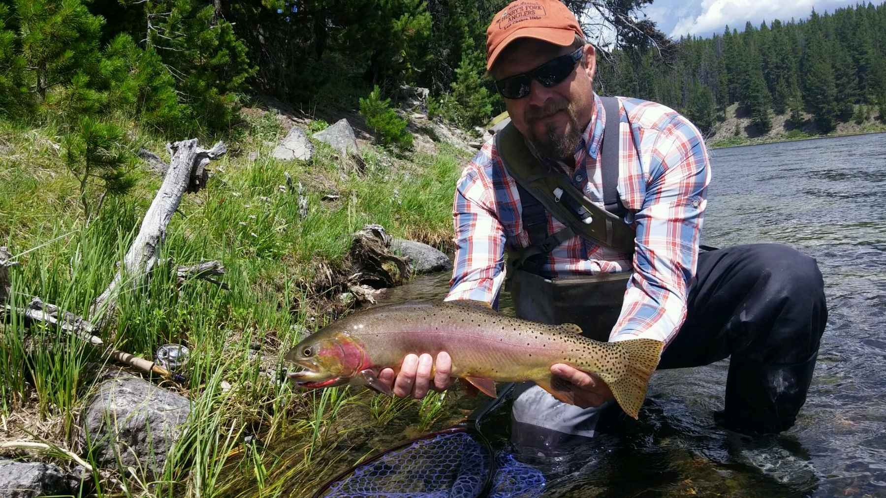 Cutting for cutthroat hatch magazine fly fishing etc for Hatch fly fishing