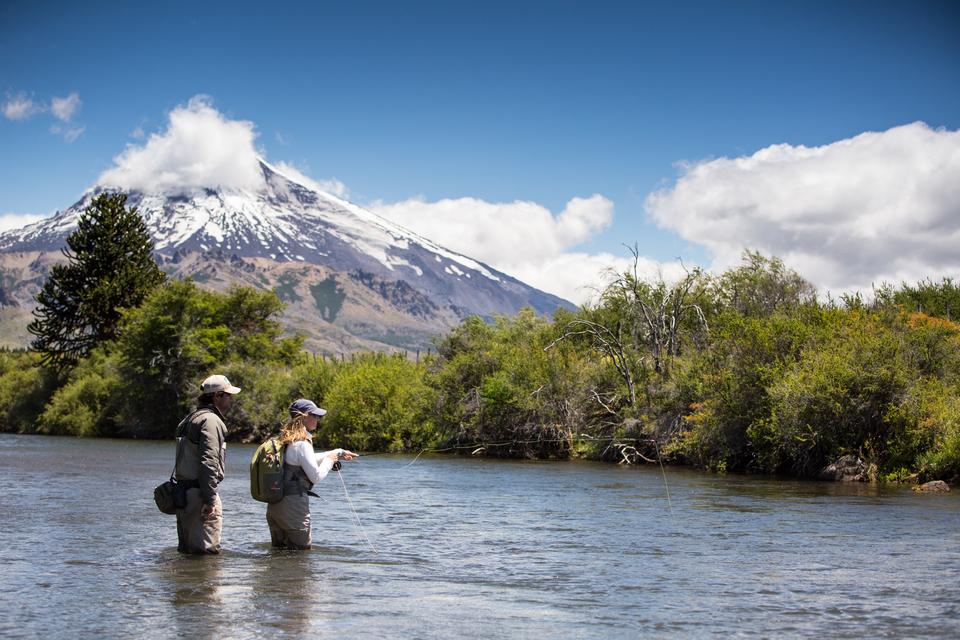 Trout Fishing Nx South Island