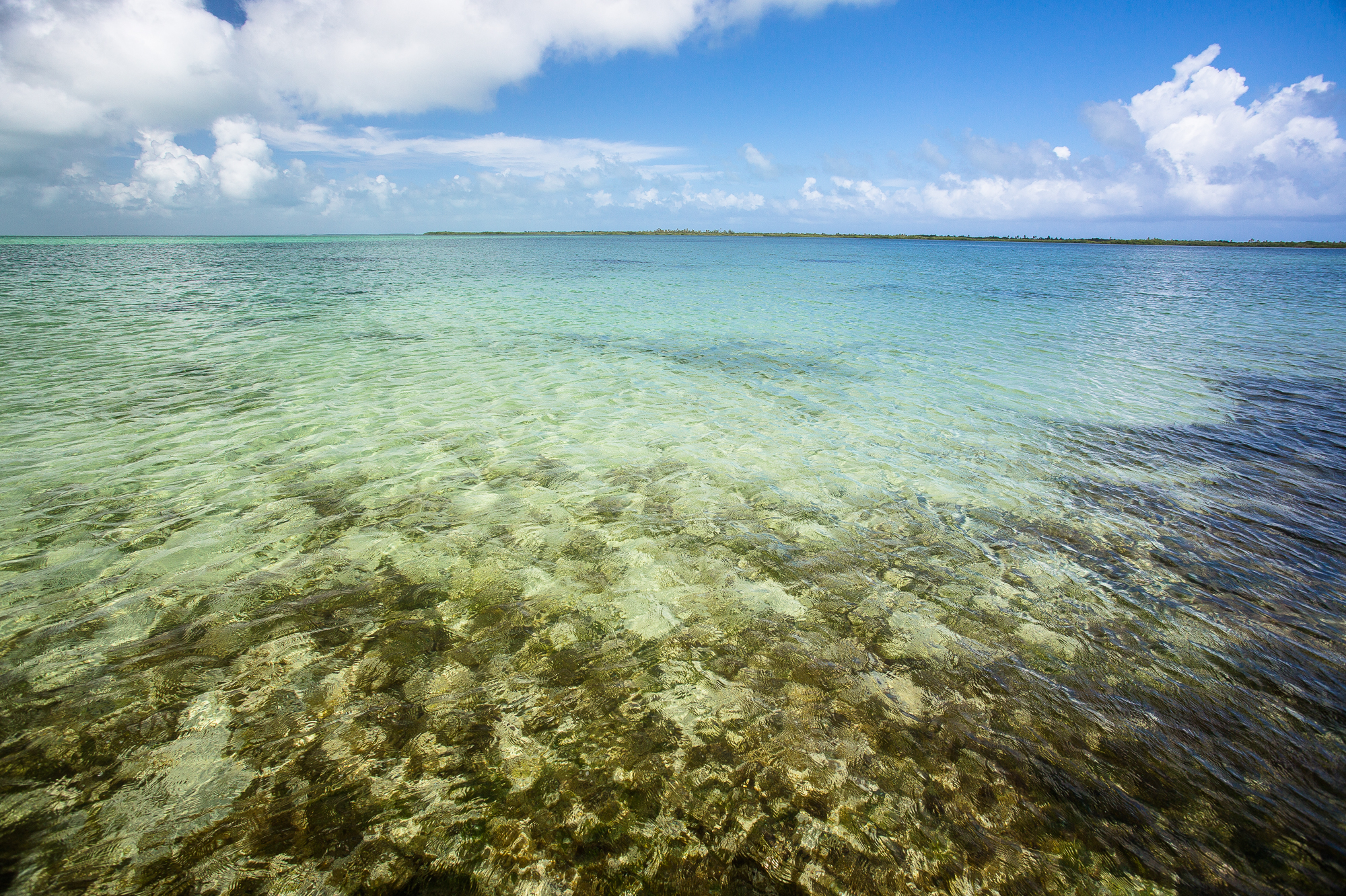 The flats on Ascension Bay stretch on seemingly endlessly, offering opportunities for lengthy searches for permit, bonefish and other local species. (photo: Chad Shmukler)