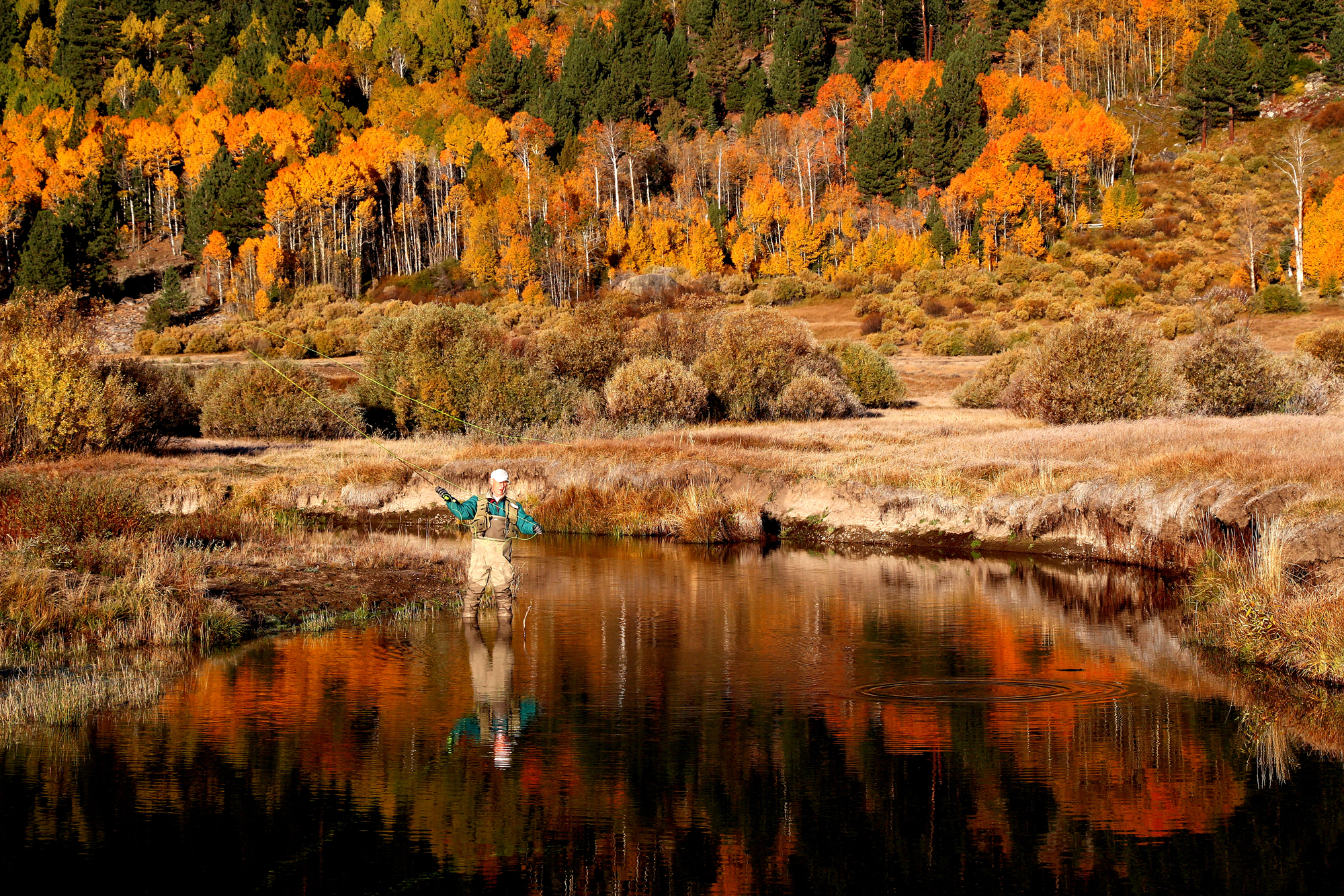 Is it possible to capture a more autumnal fishing scene than this one by Philip Reedy on the West Carson River in California? We're not sure. Throw in the dissipating rings from a rising trout, and the picture is complete.