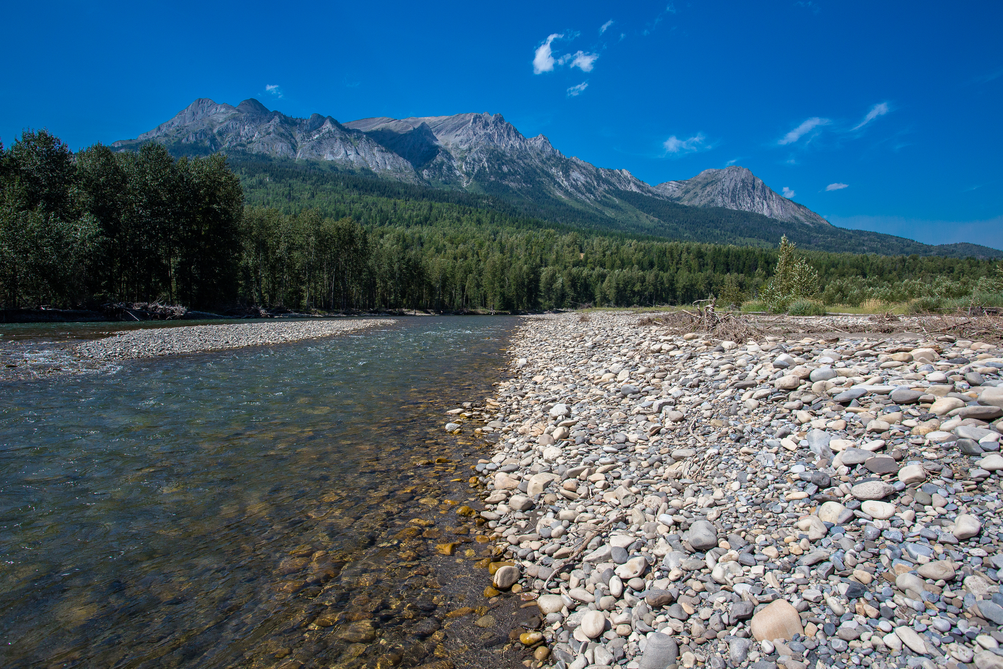 (2/2) As noted, the Elk is readily fished on foot and this section -- not far from downtown Fernie -- is as good as any.