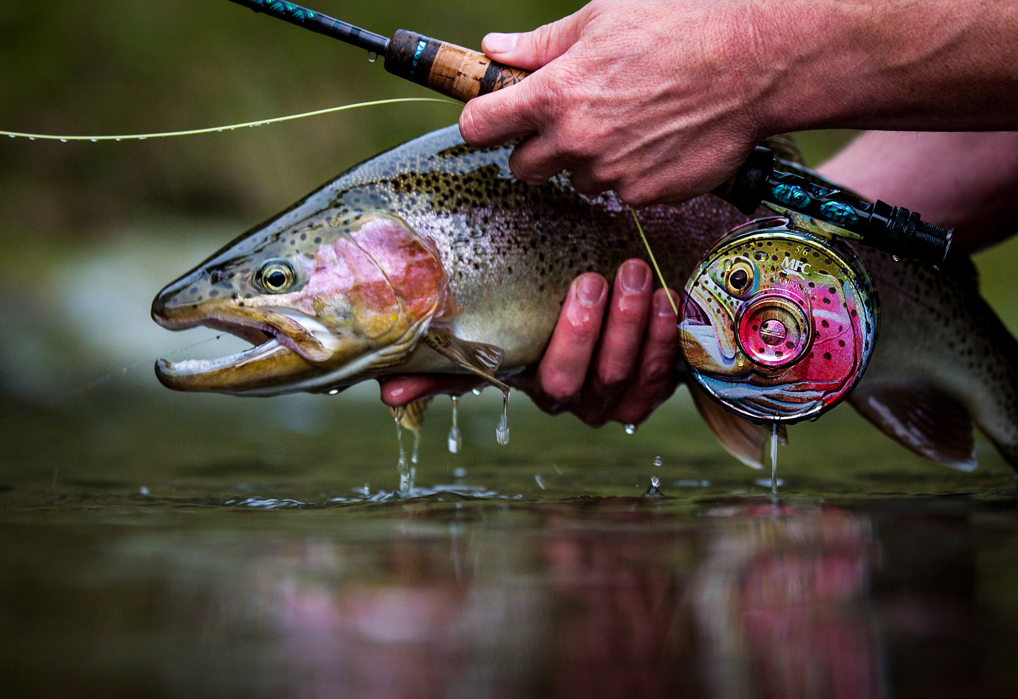 (RUNNER UP) What's not to like about this image? Sure, another stop down and we'd likely have a tack-sharp rainbow, but who can be bothered with such a worry when you're entranced by the silky-smooth texture of the water, the eerily well-paired couple that is Stu Hastie's New Zealand hog and the Montana Fly Company reel. Toss in Stu's handy work on the custom fly rod, and the whole scene seems like it was pulled from a dream.