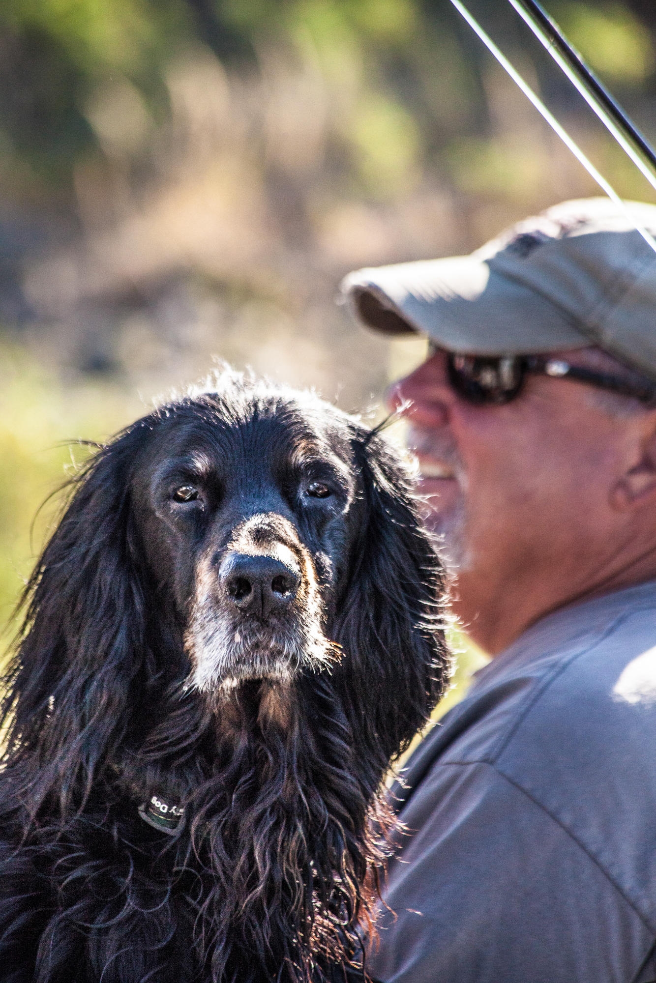 Watcher in the boat. Otis keeps a keen eye while his owner, guide Art Newman, relaxes in the drift boat.