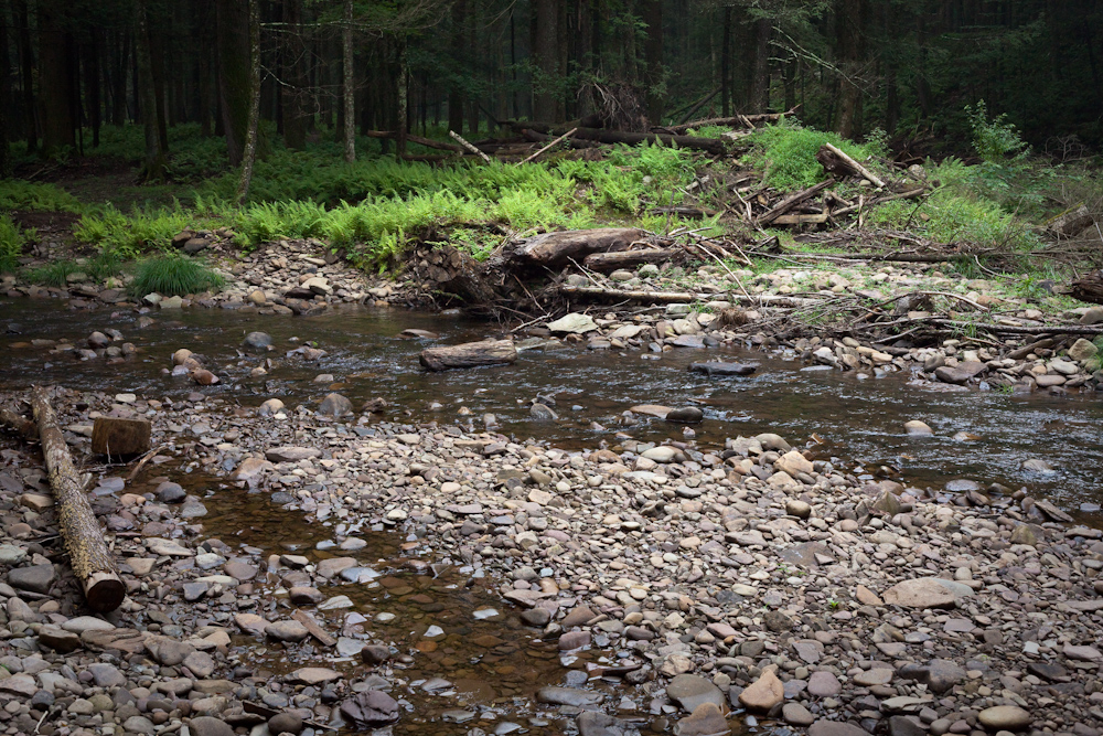 Much of the streambed is exposed due to low summertime water conditions.