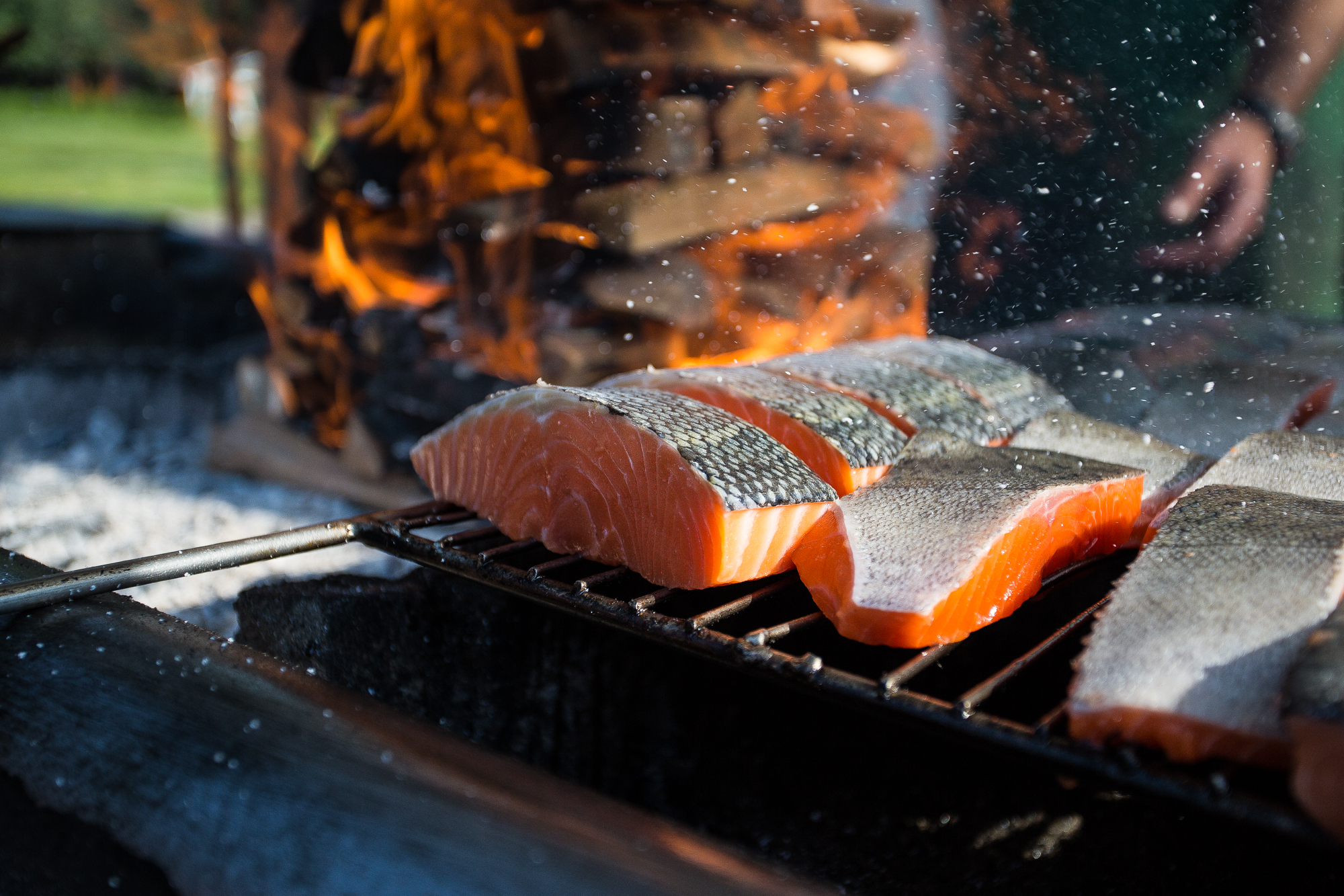 A feast of wood-fire grilled Taku River sockeye salmon, which labored over by the staff of the Taku River Lodge during an extensive cooking and smoking process, awaits. The salmon of the Taku River, like those of every river, stream and creek that dots the Tongass, depend on stable, clean, wild habitat to thrive (photo: Chad Shmukler).