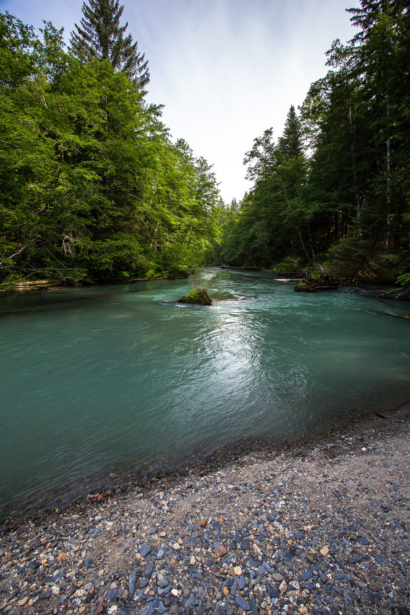 Cowee Creek runs a rich, milky blue-green as a result of the glacial flour suspended in the meltwater that feeds the stream. Even when air temperatures reach their peak, meltwater-fed streams like Cowee remain at chilly, optimal temperatures for salmonids (photo: Chad Shmukler).