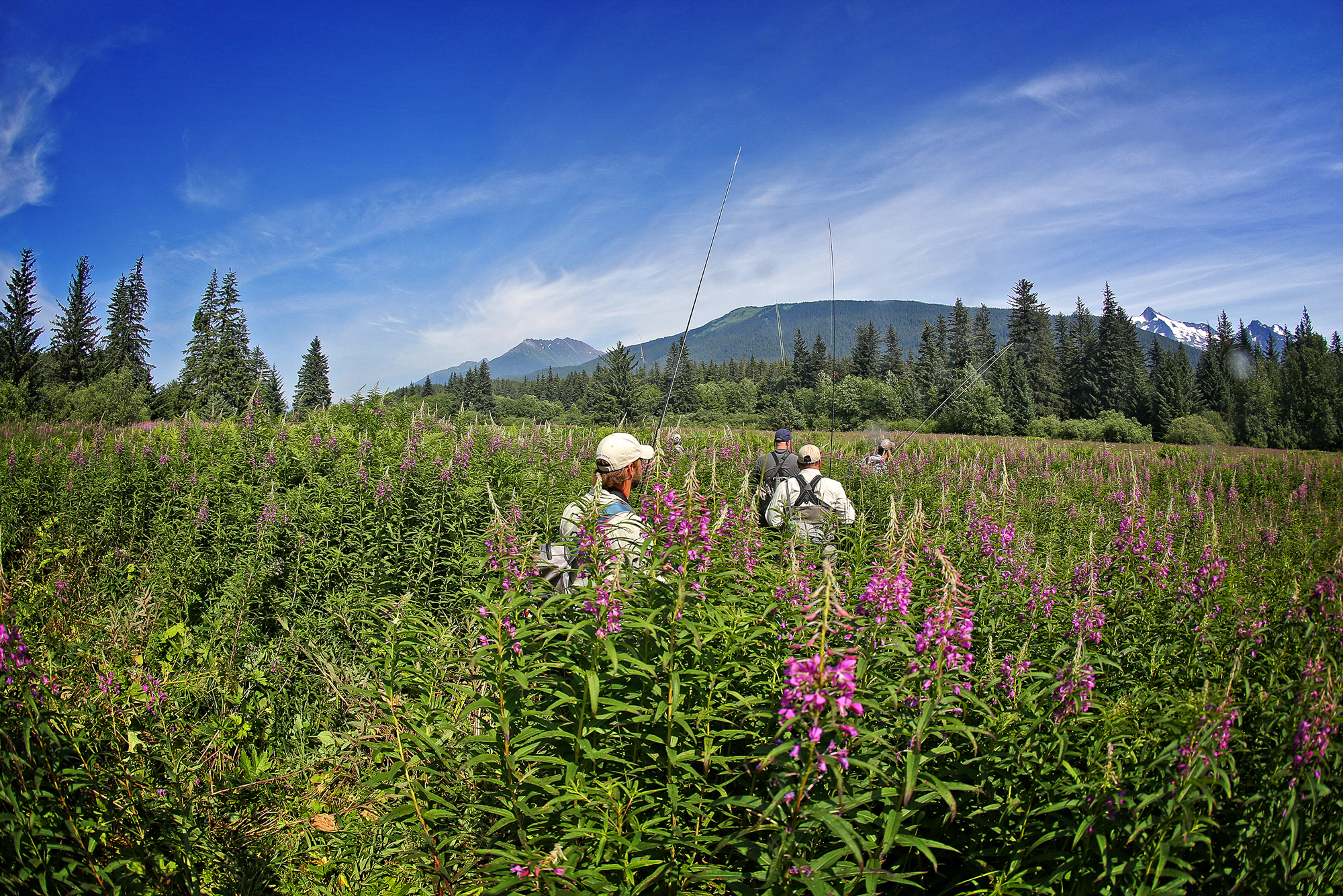 Making our way to another favorite spot a bit farther downriver means tromping through a preposterously bear-friendly meadow that is choked with fireweed that exceeds 8 feet in height in many places. Whiffs of bear musk, whether real or imagined, are detected by more than one angler as we happily but cautiously make our way through the towering weeds. As we emerge on a sandy bank a few hundred yards downstream, we're greeted by a relatively fresh brown bear print (photo: Earl Harper).