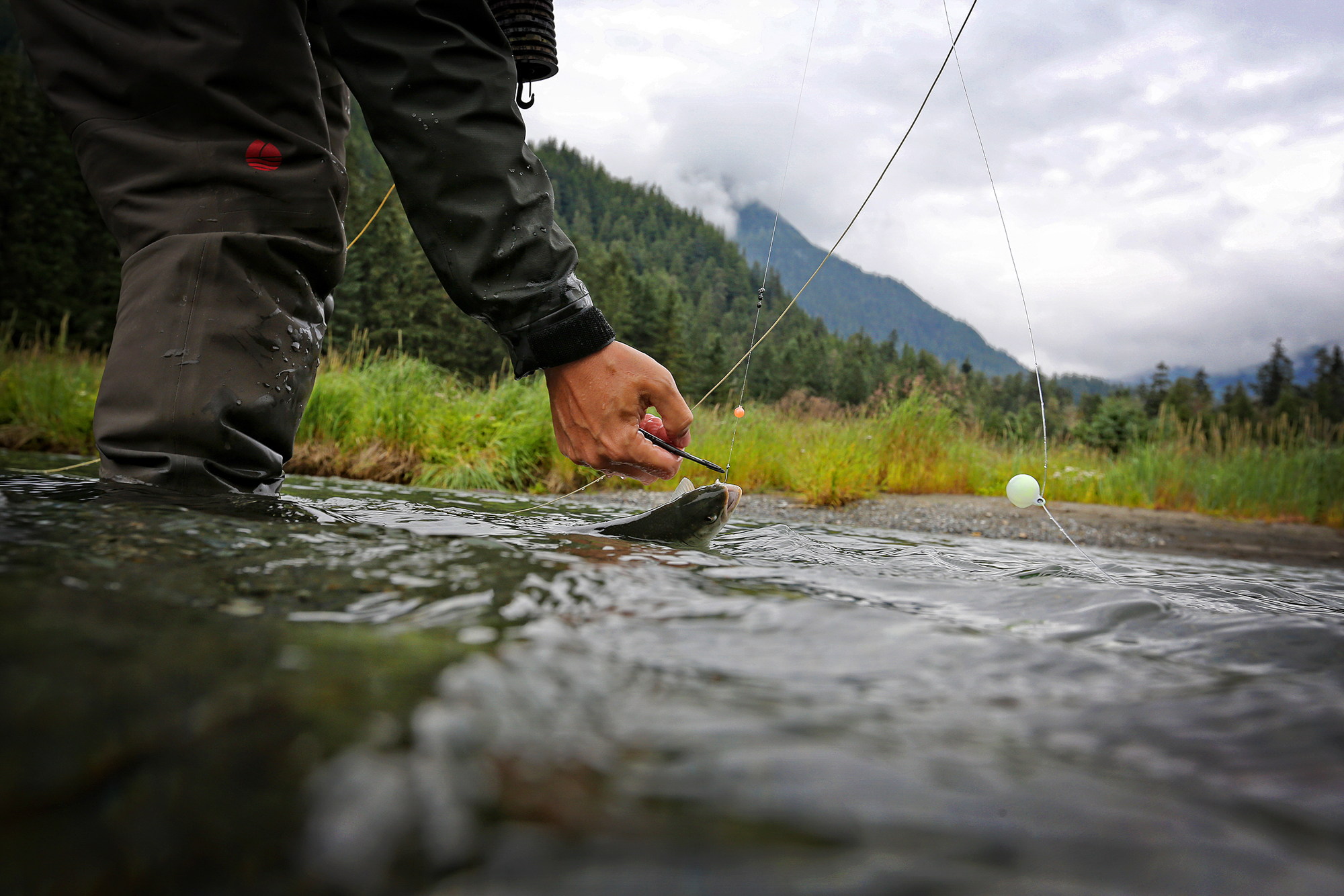 "(1/2) The vast majority of the fishing in creeks like these is done using bead rigs -- plastic beads designed to imitate salmon eggs -- pegged 1-2 inches above a bare hook. Frowned upon by some, ""beading"" is more effective and intricate than fishing with yarn-based egg flies and significantly reduces fish mortality due to a drastic decrease in the number of deeply swallowed hooks (photo: Earl Harper)."