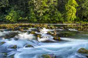 north umpqua wild and scenic river