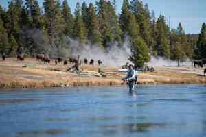 firehole river - fly fishing - yellowstone national park