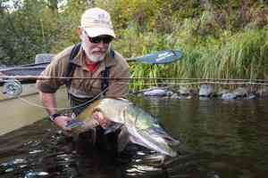 bob white  fly fishing musky