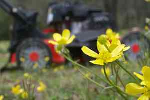 lawnmower wildflowers