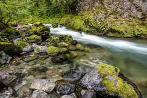 Quartzville Creek in Oregon