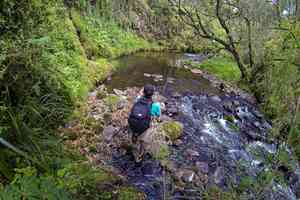 trout fishing aberdares national park