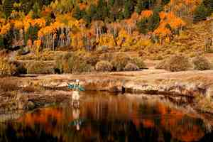 West Carson River, CA