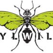 Idylwilde Flies
