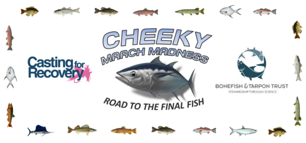 Latest blog posts hatch magazine fly fishing etc for Cheeky fly fishing