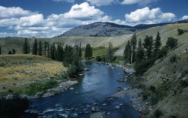 Lamar River Yellowstone National Park