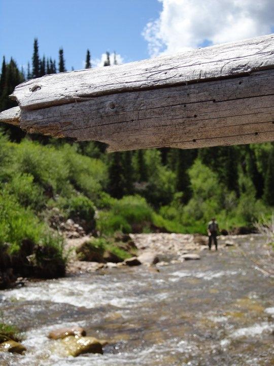 Weber river utah hatch magazine fly fishing etc for Weber river fishing