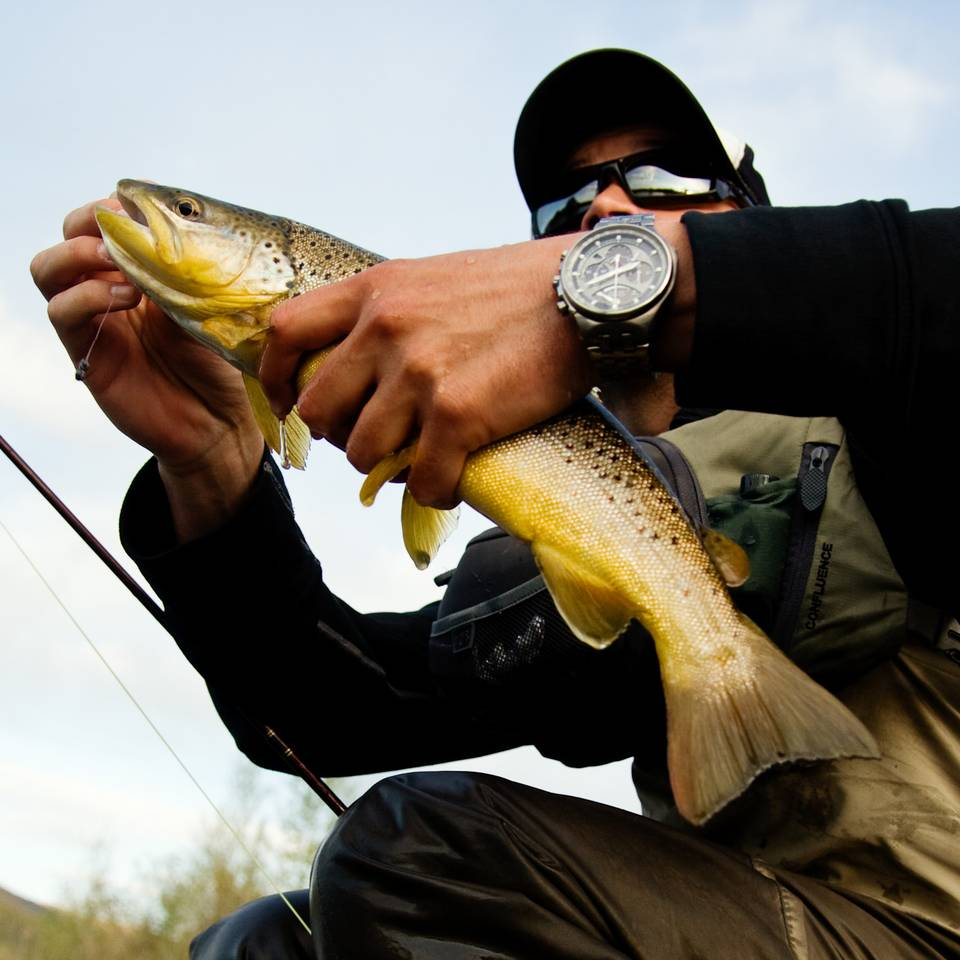 June Brown Trout