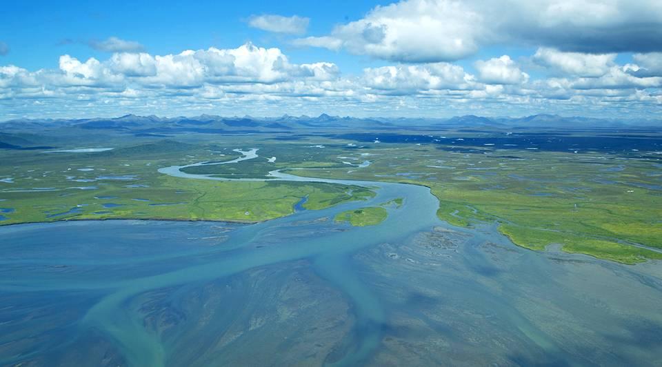 Kanektok River Mouth