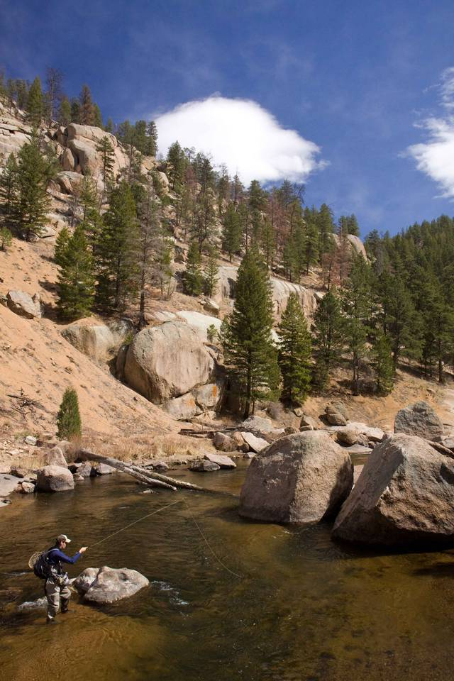 South Platte River - Cheeseman Canyon Run