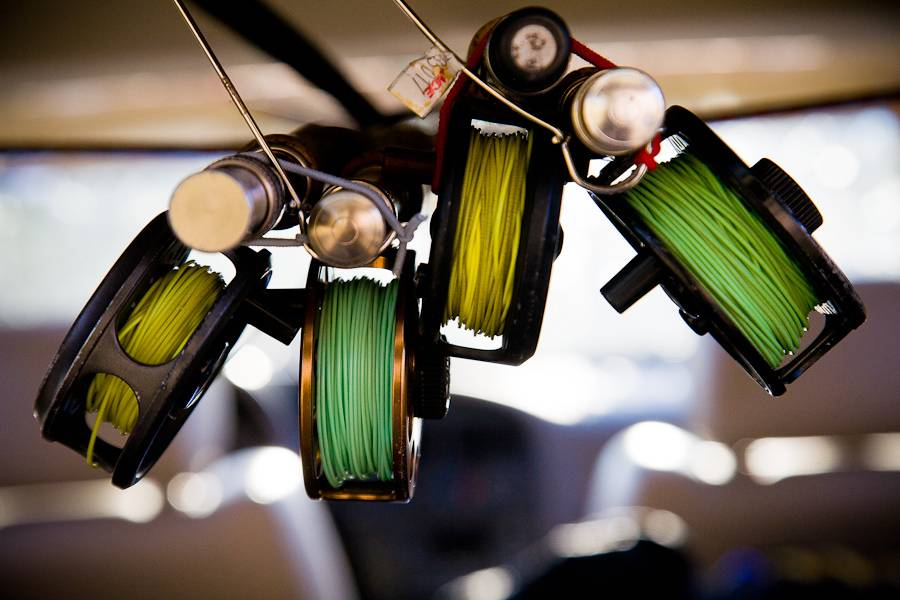 Green and Gold Reels - by Kyle Zempel