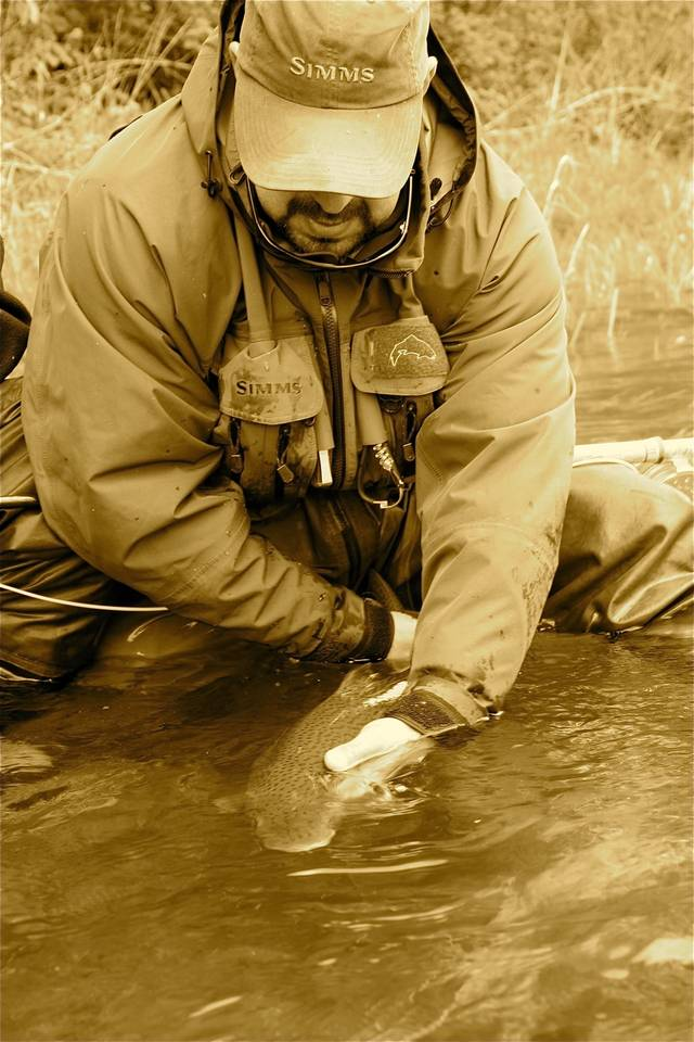 Oregon Winter Steelhead