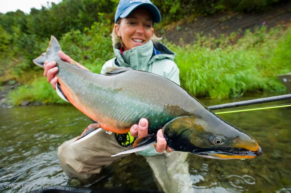 Kamchatka Fly Fishing - Dolly Varden 2