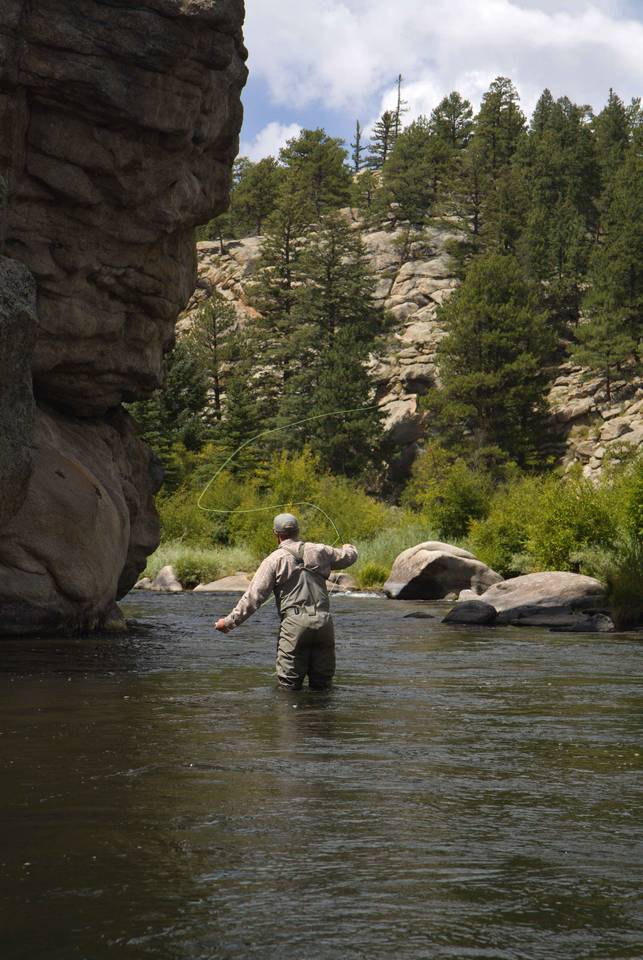 South Platte River - Eleven Mile Canyon Dry Fly Fishing