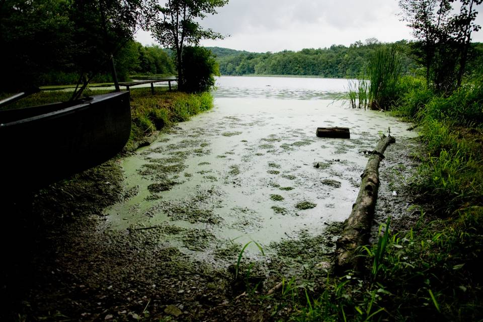 Stormy Bass Pond