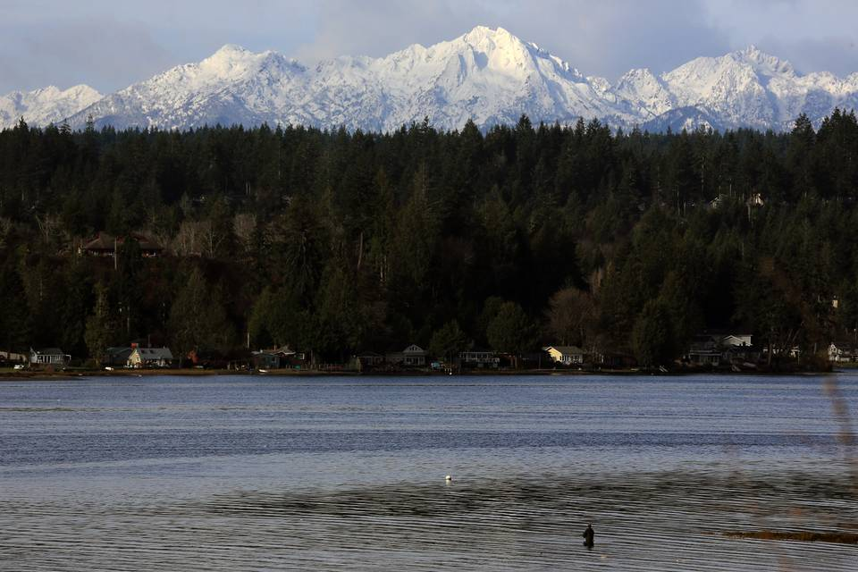 Fly Fishing Puget Sound: Part I