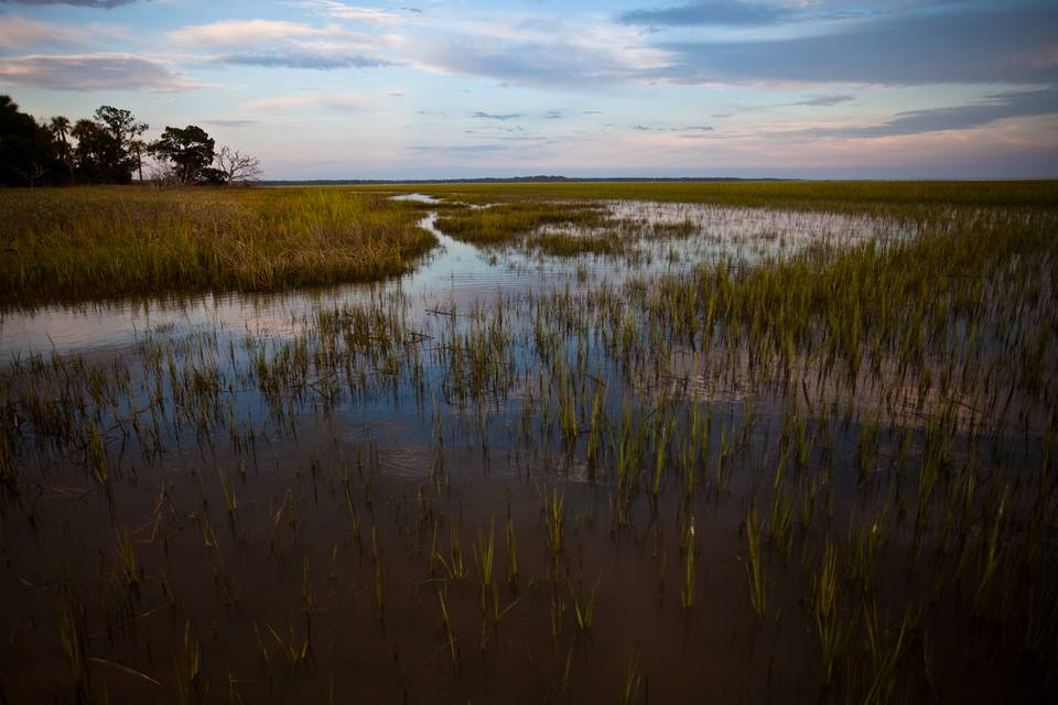 South Carolina Broad River Flats
