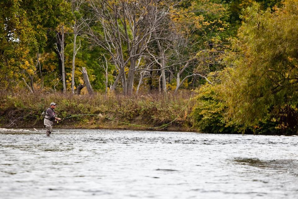 Douglaston Salmon Run below Meadow Run
