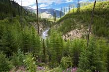 north fork blackfoot montana