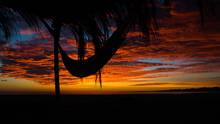 baja beach hammock