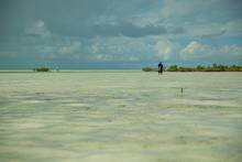flats wading bahamas