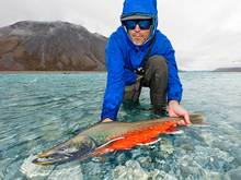 dolly varden | arctic national wildlife refuge